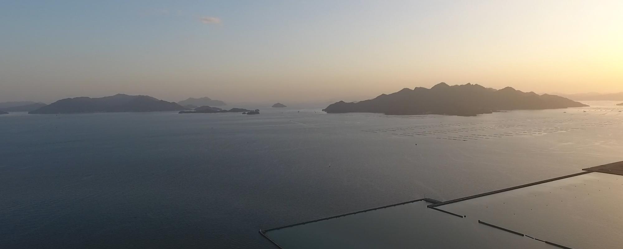 広島わんがんカメラ サイトからのお知らせ